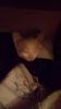 В хорошие руки котенка (бесплатно)