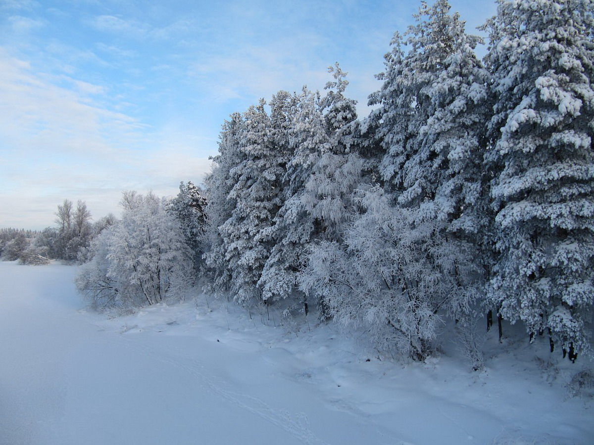 Луга зимой