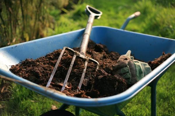 В Луге наладят производство компоста